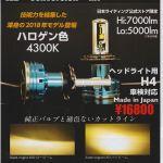 日本LEDハロゲン風_RR